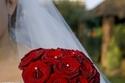 مسكات عروس حمراء لعروس الفالنتاين