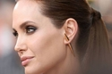 Angelina Jolie in Stella McCartney