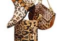 نقشة الفهد المرقط في خزانتك