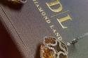 صور مجموعة العرائس من ألماس Diamondland لعروس تحب التميز في شبكتها