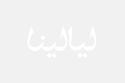 فستان أمل العوضي من تصميم يوسف الجسمي