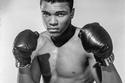 أصبح ممثلاً للاعب وزن ثقيل وهو 20 عاماً عن لويفيل ولاية كنتاكي في 17 مايو 1962.