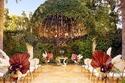 ديكور حفل زفاف نيكولاس كيج