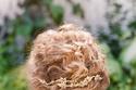 اكسسوارات شعر عروس مستوحاة من الطبيعة