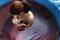 بعد الولادة تحت الماء