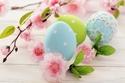 أزهار طبيعية ملونة لمنزلك في عيد الفصح وشم النسيم