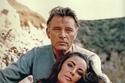 أهدى الممثل البريطاني يتشارد بيرتون زوجته عقد بـ 11 مليون دولار