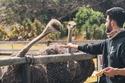 عبود العمري خلال رحلته إلى جنوب أفريقيا