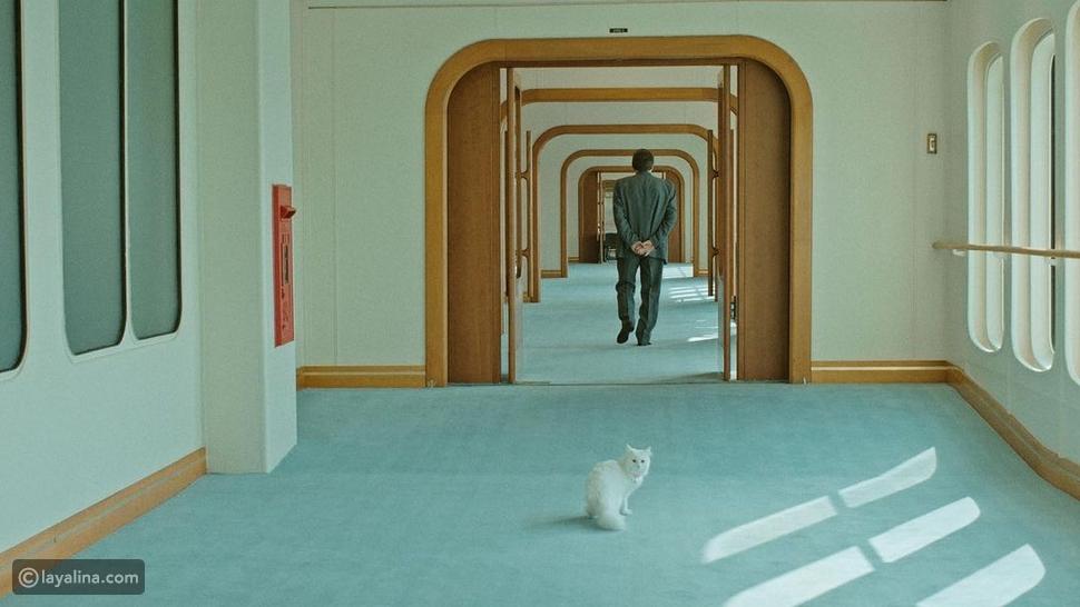 مشهد من مسلسل السنونو