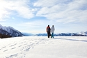 هناك العديد من المسارات المعدة خصيصاً لمحبي المشي في النمسا