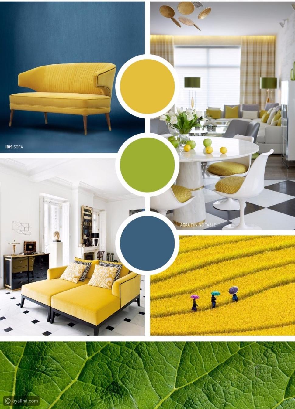 الأصفر والأزرق الفاتح
