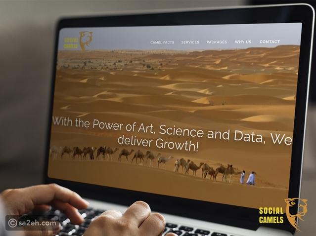 حاوي تُطلق وكالة وسائل تواصل اجتماعي إقليمية في دبي