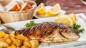 صواني السمك بالفرن بطرق مختلفة
