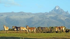 بالصور أجمل الأماكن السياحية في تنزانيا لعشاق السفاري والمغامرات