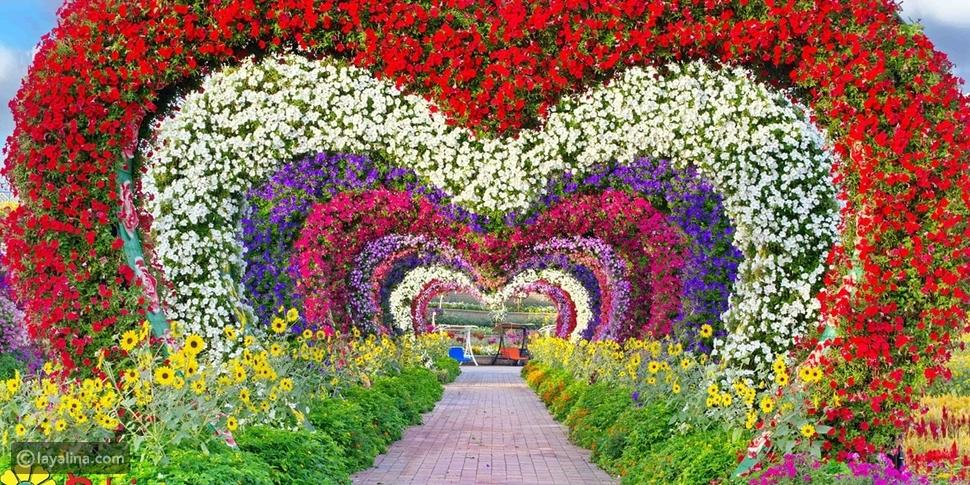 """تأمّل أروع مجسّمات الأزهار في """"ميراكل جاردن"""""""