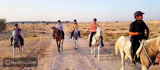 مغامرة اكتشاف الصحراء على ظهور الخيل في اسطبلات الجياد
