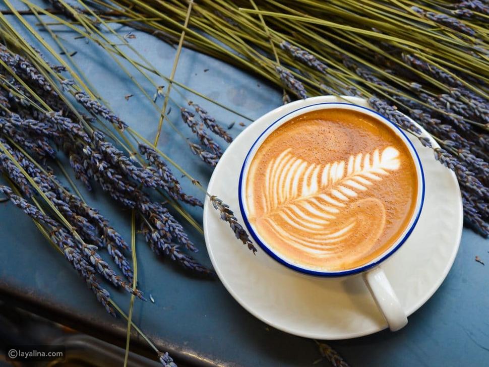 مكونات قهوة فلات وايت