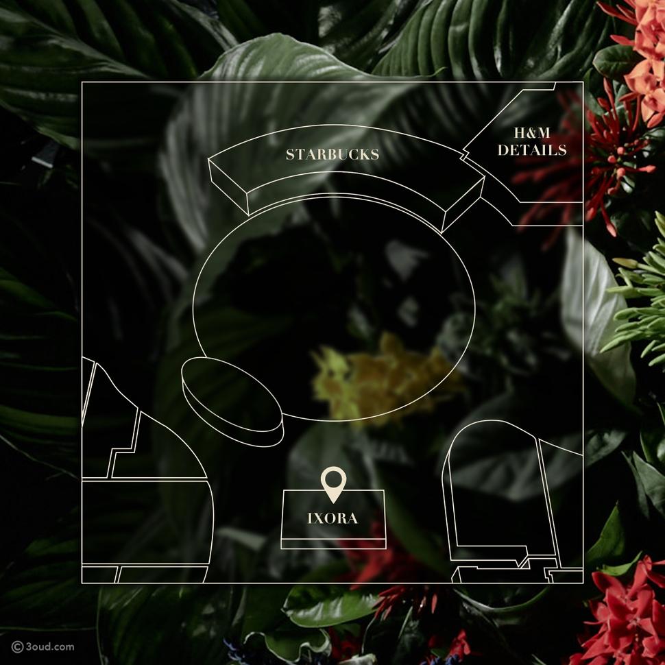 Ixora تعلن عن افتتاح جناحها الجديد في دبي مول