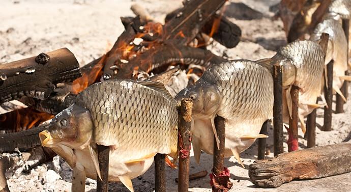 شوي السمك المسكوف على الحطب