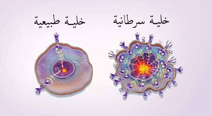 خلية سرطانية أخرى طبيعية