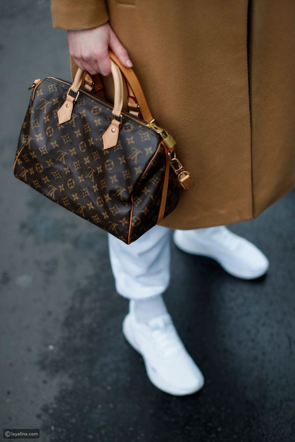 لويس فويتون سبيدي Louis Vuitton Speedy