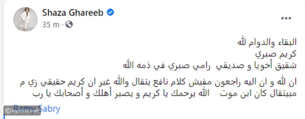 وفاة شقيق رامي صبري غرقاً بعد هروبه من المستشفى: صوته كان جميلا
