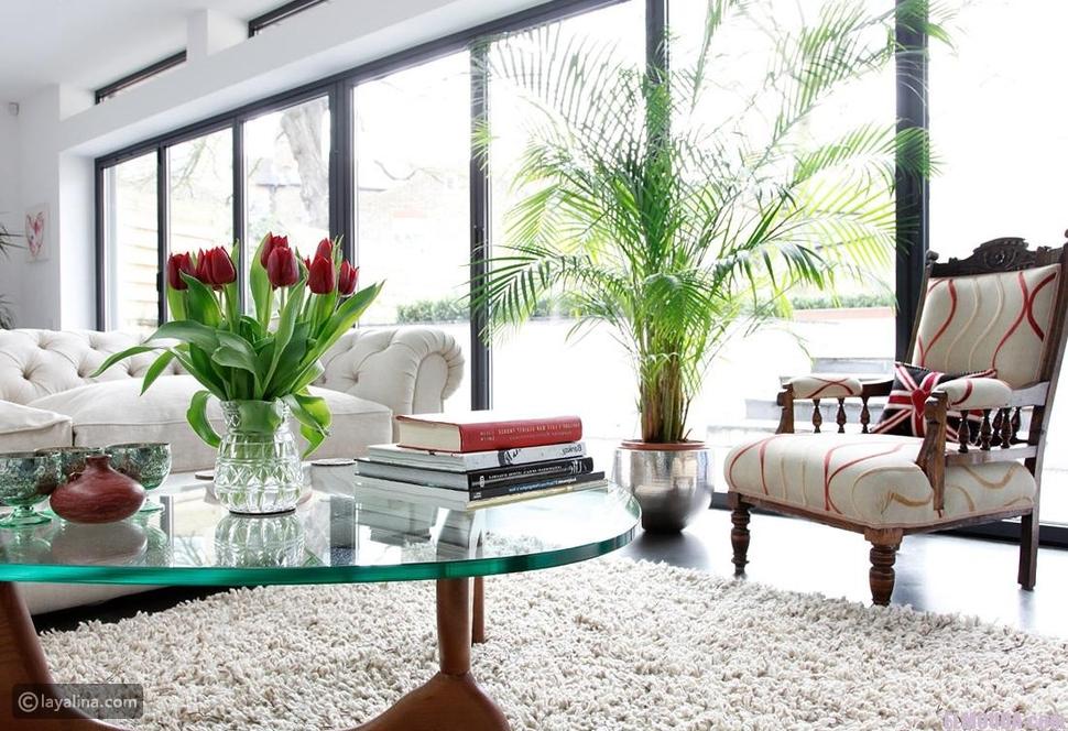 نباتات طبيعية في المنزل