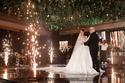 صور         بوسي تشعل حفل زفاف احمد ونوران بحضور المشاهير
