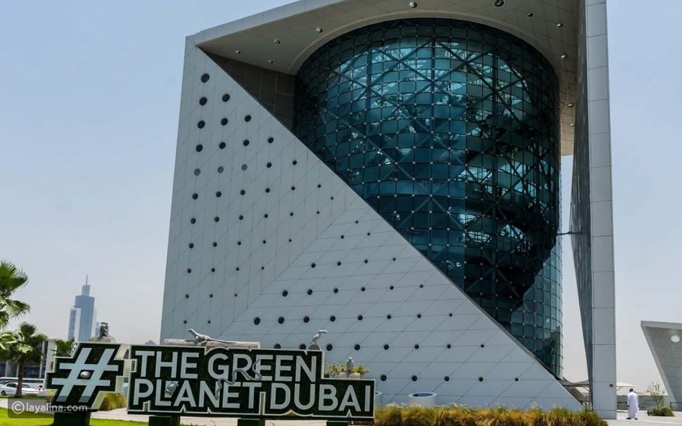 كزدورة في دبي بين عراقة الهند وغابات الأمازون