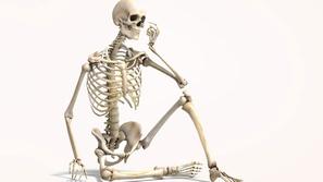 هشاشة العظام... كيف نتجنبها؟